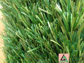 หญ้าเทียม 62 Lesmo