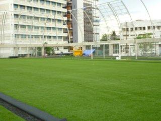 หญ้าเทียมจากต่างประเทศ