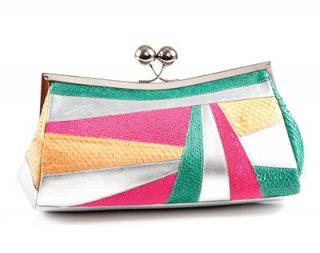 Multi Colors Clutch Bag