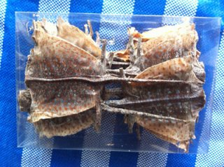 Dried Geckos Nakhon Phanom