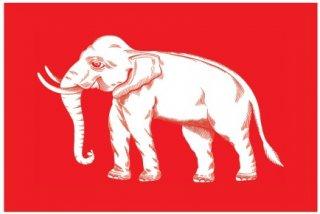 ธงช้าง