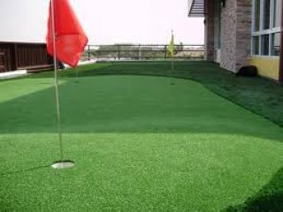 Turf for Putting Green