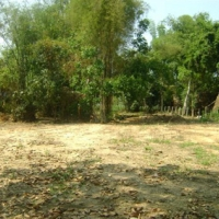 Land for Rent in Laos
