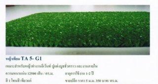 หญ้าเทียม ทีเอ 5 - จี1