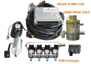 อุปกรณ์หัวฉีด Europegas