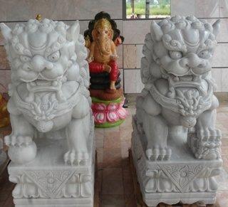 สิงโตปักกิ่งหินอ่อนแกะสลัก ขนาด สูง 100 ซม. กว้าง 40 ซม. ยาว 65 ซม.