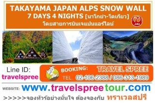 ทัวร์ญี่ปุ่น ทาคายาม่า TAKAYAMA JAPAN ALPS SNOW WALL 7 วัน 4 คืน