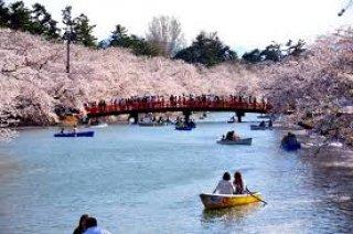 ทัวร์ญี่ปุ่น เดือนพฤศจิกายน 2558 / 2015