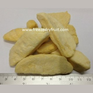 Freeze Dry Mango Item no: FD102