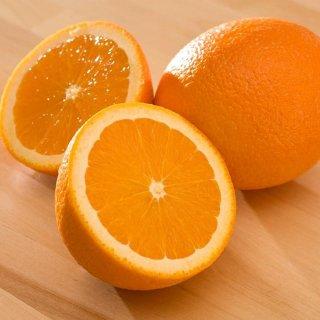 ส้มซันคิสต์