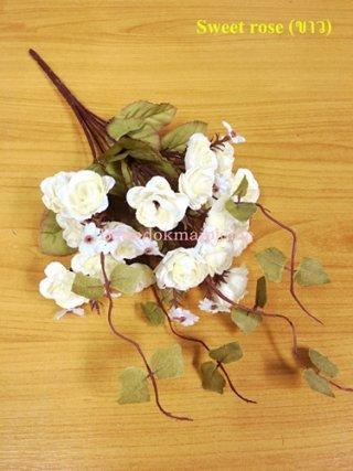 ดอก Sweet rose ขาว