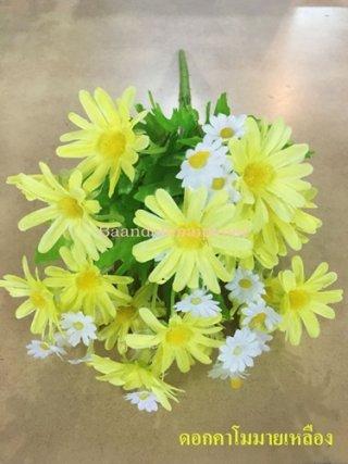 ดอกคาโมมายล์ สีเหลือง