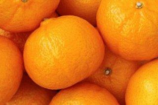 ส้มฮันนี่เมอคอต