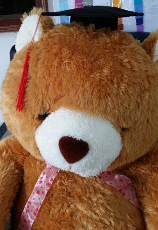 ตุ๊กตาหมีรับปริญญา