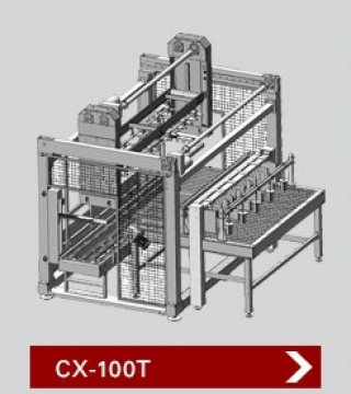 เครื่องบรรจุสินค้าลงกล่อง รุ่น CX 100T