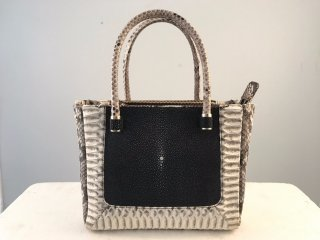 stingray and python bag