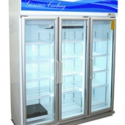 Display Chiller for Sale, Freezer, Coolers