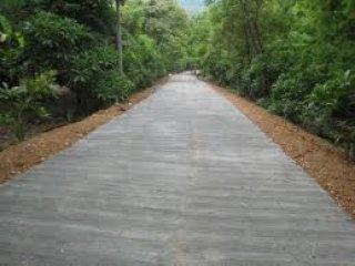 ทำถนนคอนกรีต