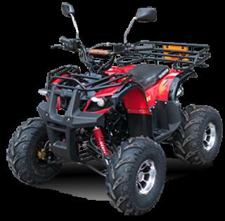 ATV รุ่น Mini110&125